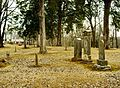 Mcminnville-city-cemetery-tn1.jpg
