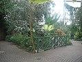 Meijer Gardens October 2014 51 (Tropical Conservatory).jpg