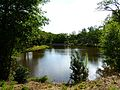 Miallet Puyraud étang aval (3).JPG