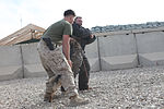 Military Working Dog Demonstration 121205-M-EF955-381.jpg