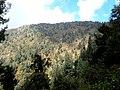 Miran Jani Peak View from 1-km - panoramio.jpg