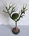 Modell von Utricularia vulgaris (Gewöhnlicher Wasserschlauch) -Brendel Nr.135-.jpg