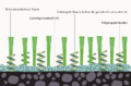 Modernartificialgrass2German.png