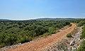 Montbazin, Hérault 14.jpg