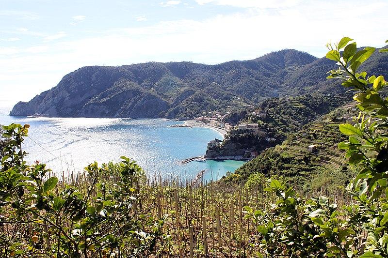 File:Monterosso al Mare, Punta Mesco - panoramio.jpg