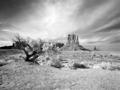 Monument Valley, Arizona LCCN2010630324.tif