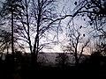 Morgenstimmung mit etwas Sonne und Bäumen.jpg