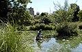 Motcombe Gardens - geograph.org.uk - 44214.jpg