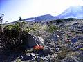 Mount Hood Toward Cooper Spur - Flickr - Joe Parks.jpg