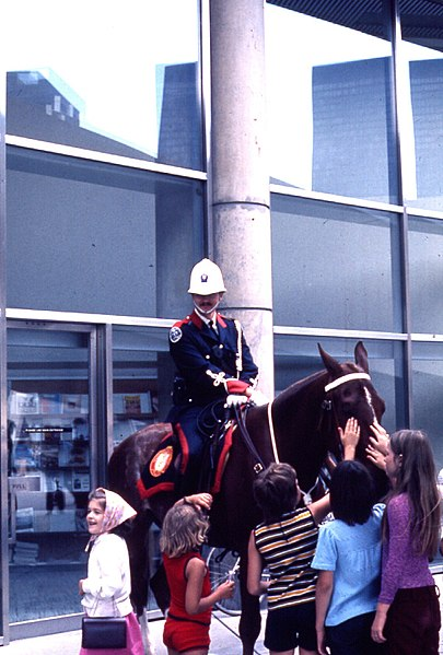 405px-Mounted_police_officer_at_Toronto_city_hall.jpg