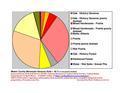 Mower co pie chart New Wiki Version.pdf