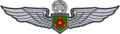 Mtr Army Aviation Service Badge.png