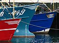 Mussel dredgers at Bangor harbour - geograph.org.uk - 863900.jpg