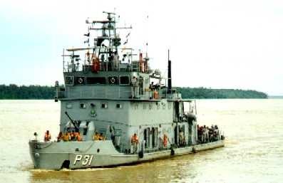 NPaFlu Rondônia - P 31