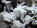 Naltar Valley Gilgit 6.jpg