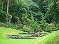 Napier botanical gardens shot 4.jpg