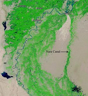 Nara Canal - Nara Canal originates from Sukkur Barrage, Eastern bank of Indus River and runs through the Thar Desert