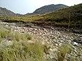 Navidhand new 362 - panoramio.jpg