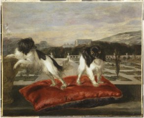 Two small dogs on the terrace of an Italianate garden