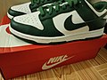 "Nike Dunk Low Retro ""Varsity Green"".jpg"