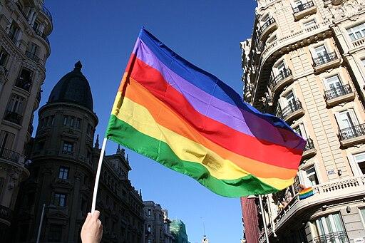 Non-standard LGBT flag, Madrid Gay Pride 2008