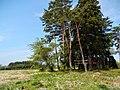 Nonakadō Towadaōyu, Kazuno-shi, Akita-ken 018-5421, Japan - panoramio (2).jpg
