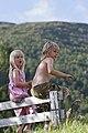 Nordfjordeid, Norway (Unsplash RxE8UCGLXk8).jpg