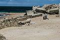 Normandy '12 - Day 4- Stp126 Blankenese, Neville sur Mer (7466714972).jpg