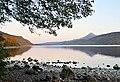 North shore of Loch Rannoch - geograph.org.uk - 1539996.jpg