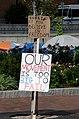Occupy Boston - honk.jpg