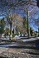 Old Balgay cemetery, Dundee - geograph.org.uk - 1158731.jpg