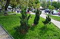 Old Kiev Hills 22.JPG