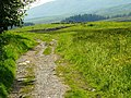 On Ivescar - geograph.org.uk - 1382114.jpg