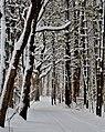 Oneida Winter - panoramio.jpg