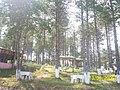 Ordu boztepe - panoramio - Öner Akgün (9).jpg