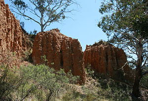 Oriental Claims - The Oriental Company used hydraulic sluicing through the land, resulting in these cliffs