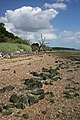 Orwell foreshore - geograph.org.uk - 860767.jpg