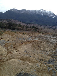 Oso mudslide 22 March 2014.jpg