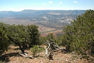 The Yampa River Valley, seen from a high overlook. Overlook of Yampa River.jpg