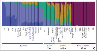 Genetic history of the Iberian Peninsula