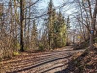 Pörtschach Leonstein Leonsteiner Weg 30012018 2587.jpg
