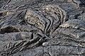 Pāhoehoe-Lava - panoramio (6).jpg