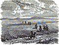PB. La steppe du Kouban (Fussart). Floriant Gille. Lettres sur le Caucase et la Crimée. 1859. P.409.jpg