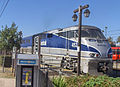Pacific Surfliner at oldtown station2.jpg