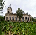 Panaeolina foenisecii - Brown Mottlegills in St. Philip's Cathedral graveyard (50270511122).jpg