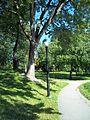 Parc La Fontaine 26.jpg