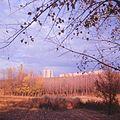 Park Rascani-Ciocana (1980). (19053281555).jpg