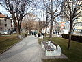 Parki i qytetit.JPG