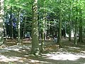 Path through woods in Pollok Country Park - geograph.org.uk - 1525173.jpg