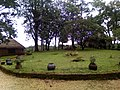 Paysage du ranch de Ngaoundaba.jpg
